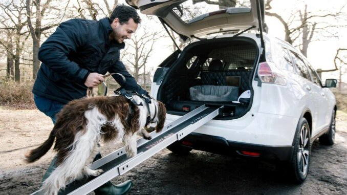 best cars for dogs 1 1619771253