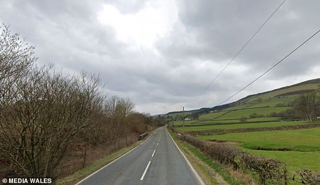 He was leading the five-vehicle convoy when his car left the A483 (pictured) and hit a tree, leaving Mr Richardson and passenger Joseph Flanagan trapped inside the vehicle