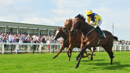 Action from the July 6th meeting at Yarmouth races.Coarse Cut (4) wins The ladies Night at Great Y